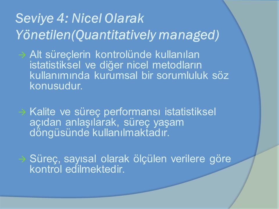 Seviye 4: Nicel Olarak Yönetilen(Quantitatively managed)