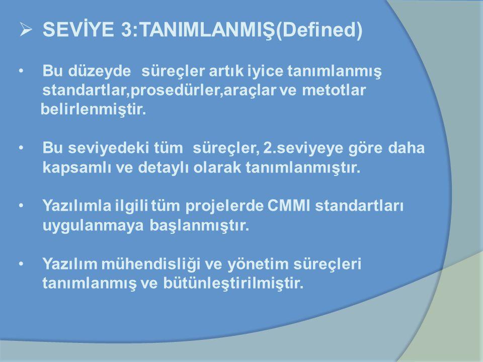 SEVİYE 3:TANIMLANMIŞ(Defined)