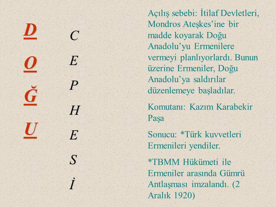 Açılış sebebi: İtilaf Devletleri, Mondros Ateşkes'ine bir madde koyarak Doğu Anadolu'yu Ermenilere vermeyi planlıyorlardı. Bunun üzerine Ermeniler, Doğu Anadolu'ya saldırılar düzenlemeye başladılar.