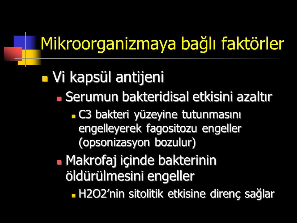Mikroorganizmaya bağlı faktörler