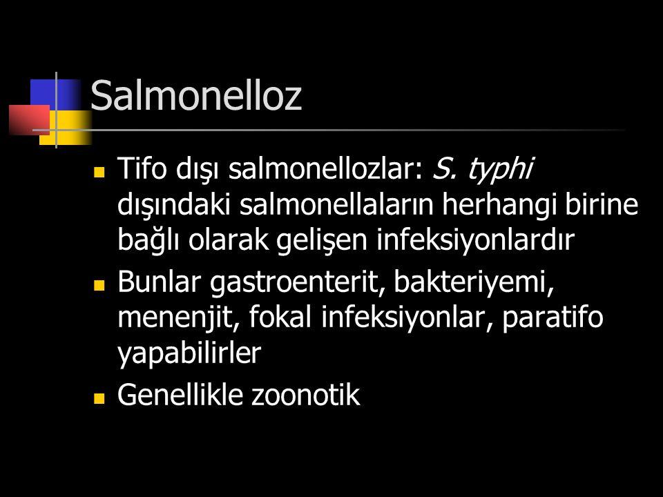 Salmonelloz Tifo dışı salmonellozlar: S. typhi dışındaki salmonellaların herhangi birine bağlı olarak gelişen infeksiyonlardır.