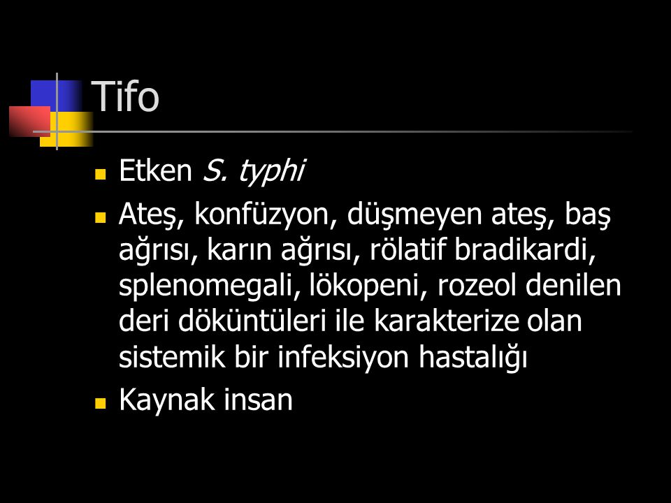 Tifo Etken S. typhi.