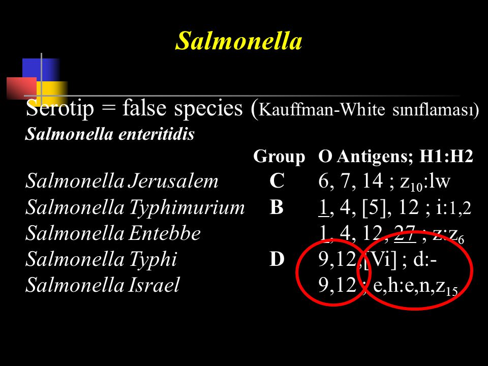 Salmonella Serotip = false species (Kauffman-White sınıflaması)