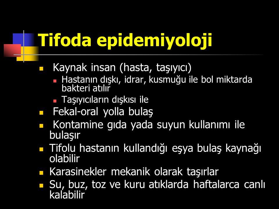 Tifoda epidemiyoloji Kaynak insan (hasta, taşıyıcı)