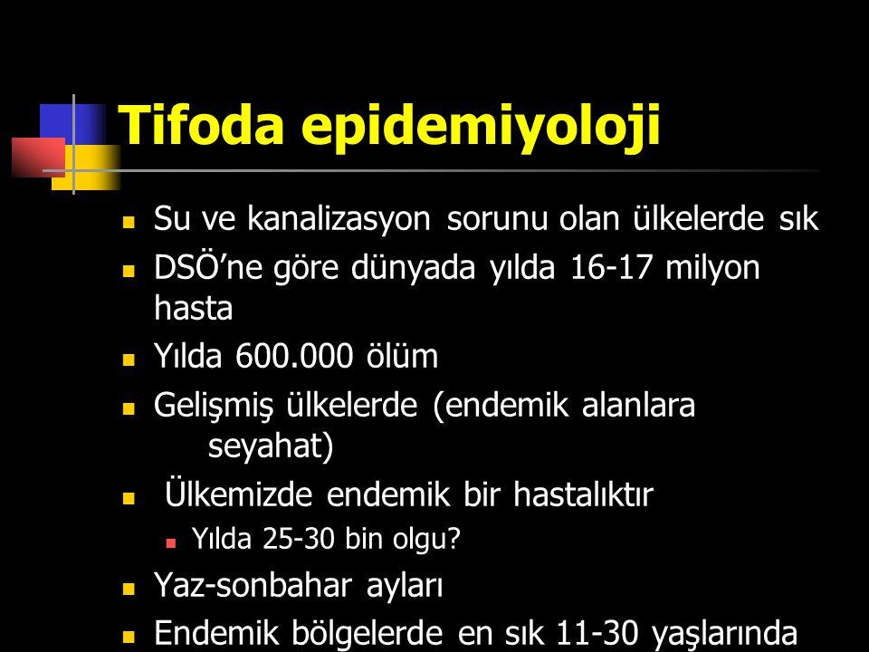 Tifoda epidemiyoloji Su ve kanalizasyon sorunu olan ülkelerde sık