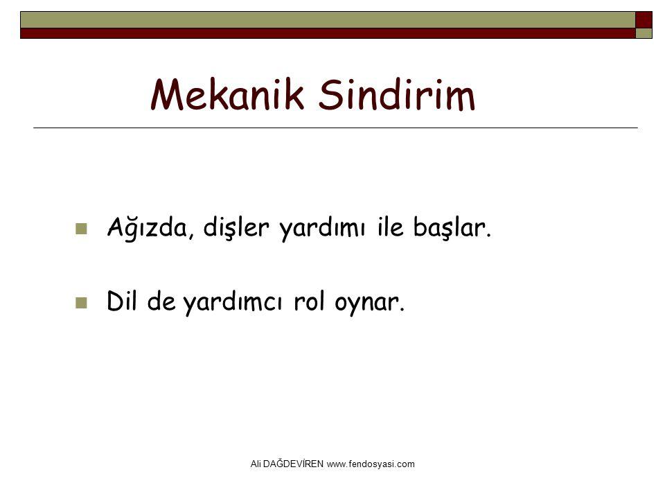 Ali DAĞDEVİREN www.fendosyasi.com