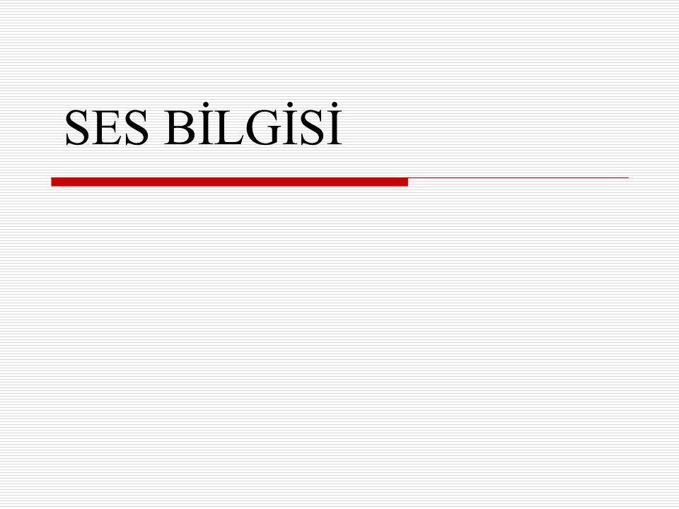 SES BİLGİSİ