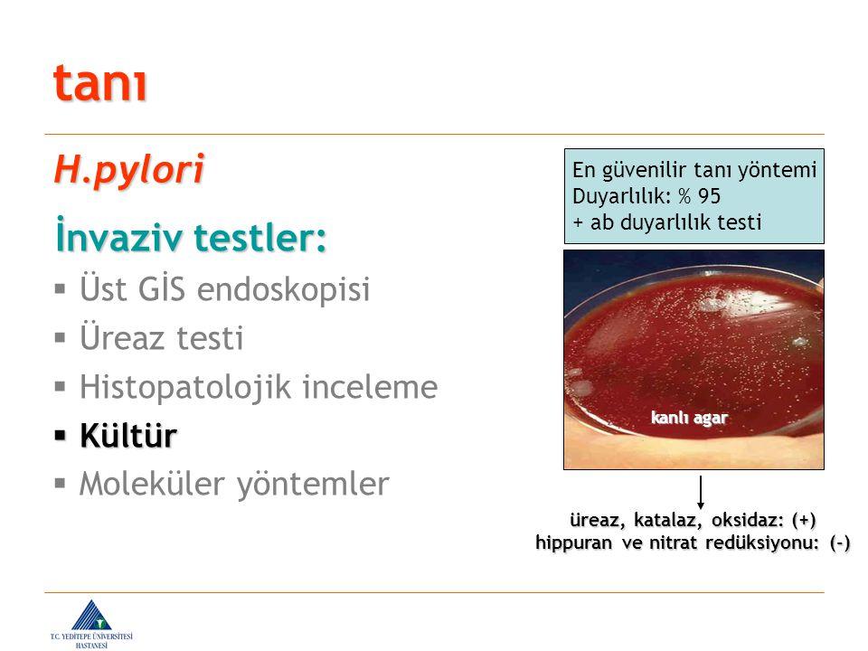 üreaz, katalaz, oksidaz: (+) hippuran ve nitrat redüksiyonu: (-)