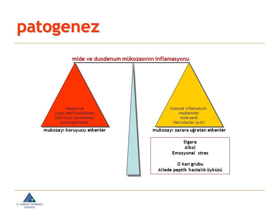 patogenez mide ve duodenum mükozasının inflamasyonu