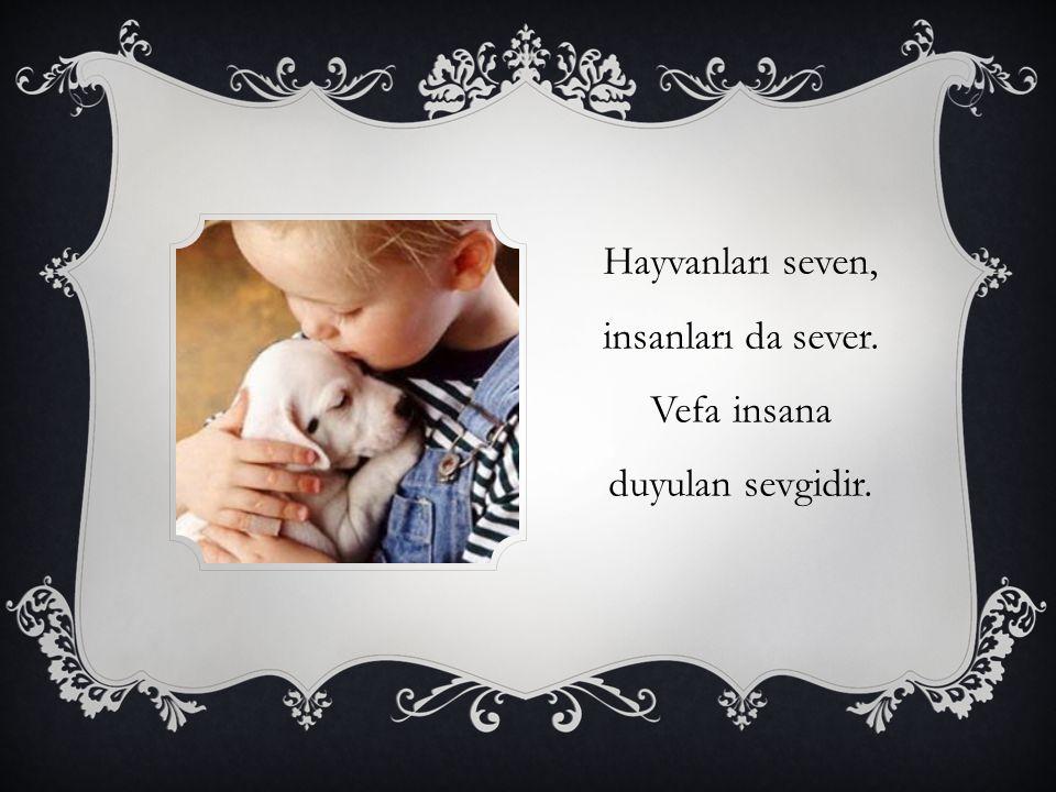 Hayvanları seven, insanları da sever. Vefa insana duyulan sevgidir.