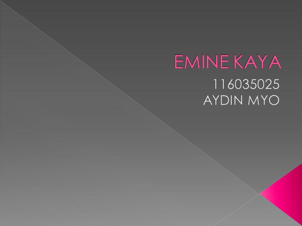 EMINE KAYA 116035025 AYDIN MYO