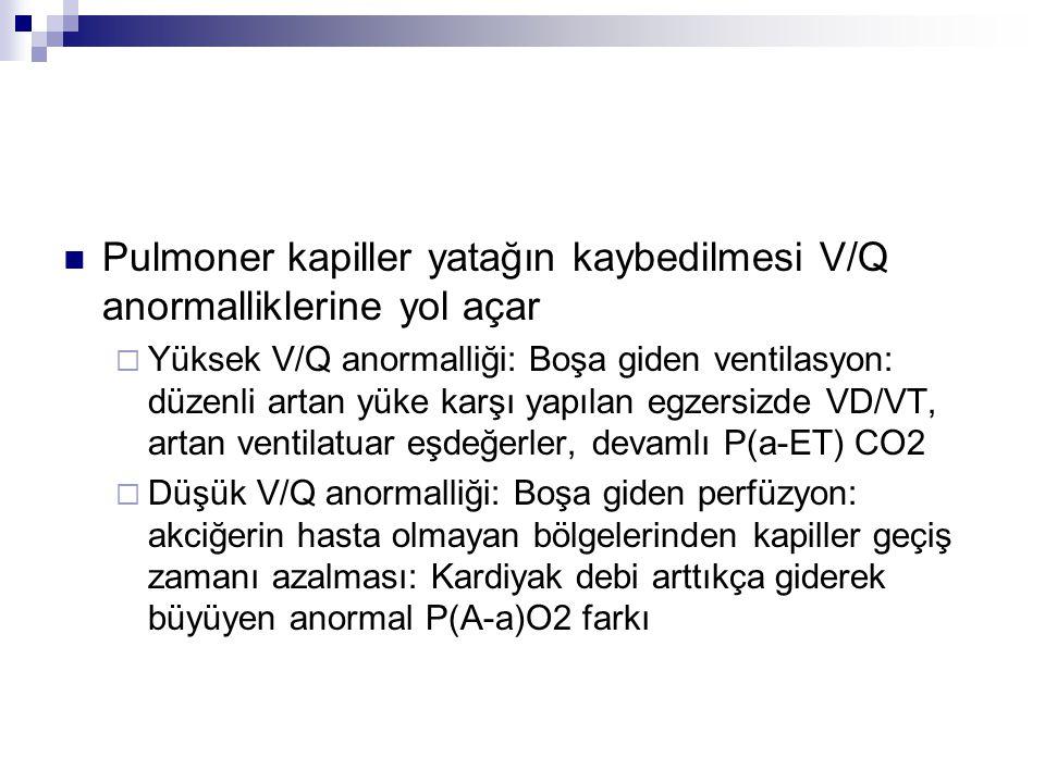 Pulmoner kapiller yatağın kaybedilmesi V/Q anormalliklerine yol açar