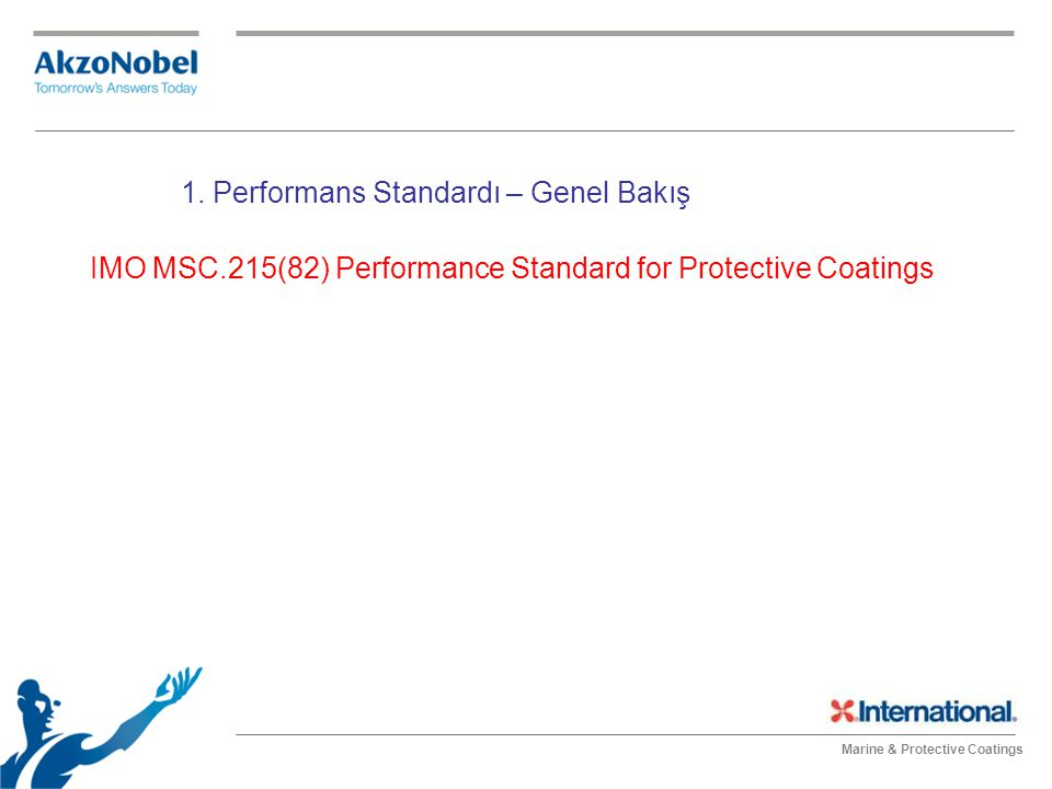 IMO MSC.215(82) Performance Standard for Protective Coatings