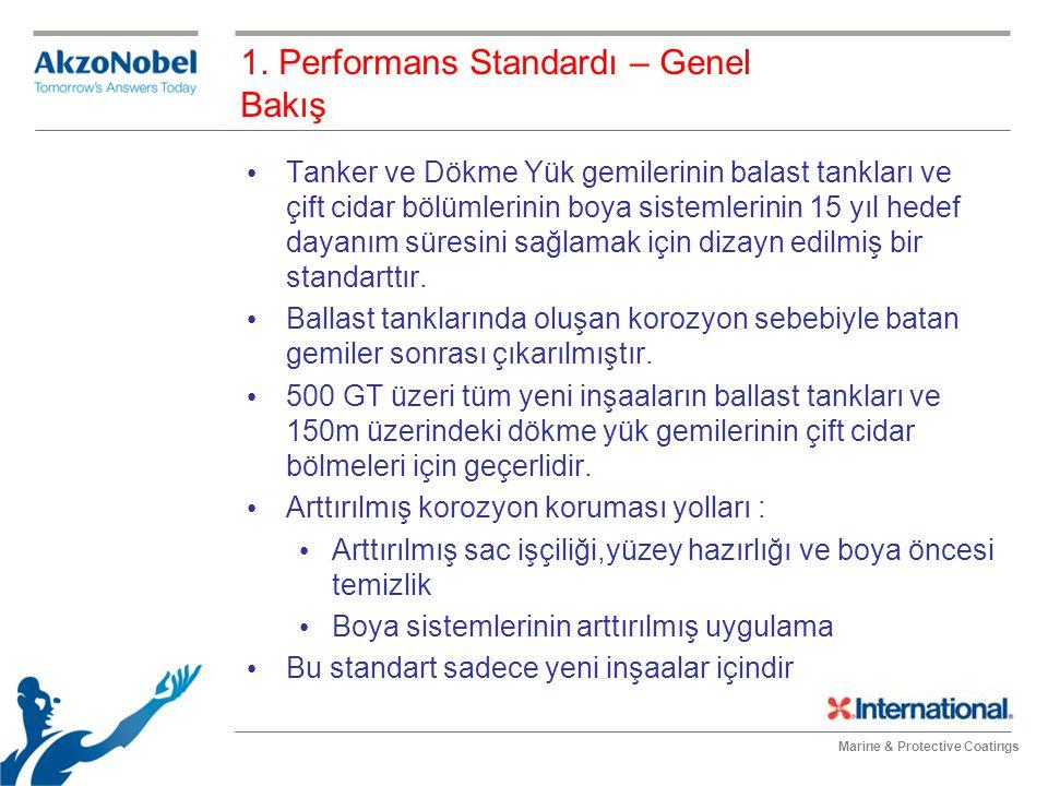 1. Performans Standardı – Genel Bakış