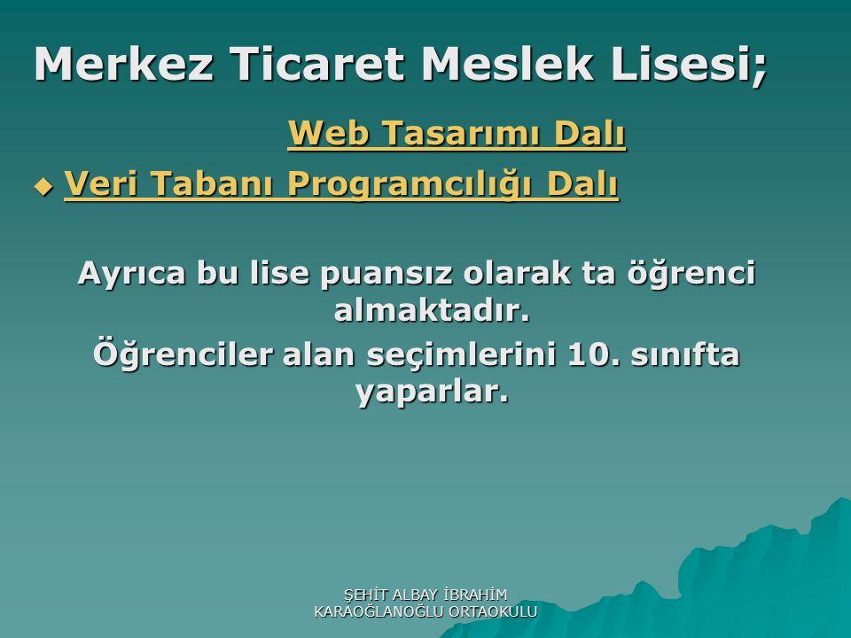 Merkez Ticaret Meslek Lisesi; Web Tasarımı Dalı