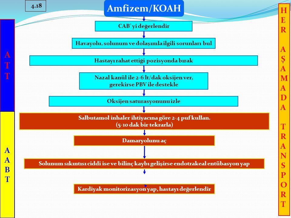 Amfizem/KOAH A T H E R A Ş M D T N S P O A B T 4.18
