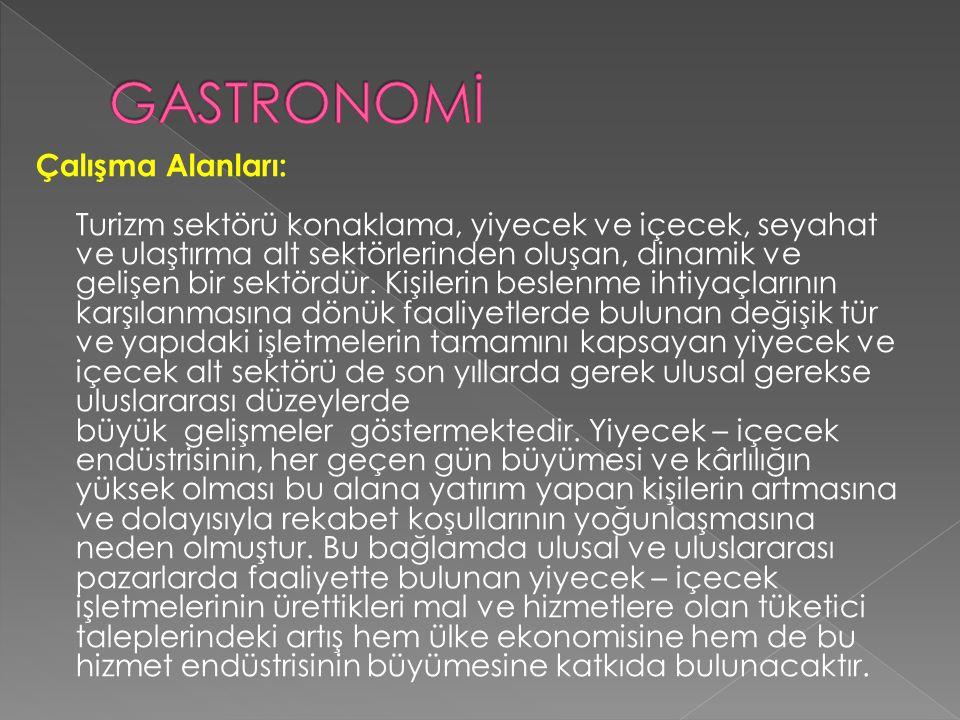 GASTRONOMİ