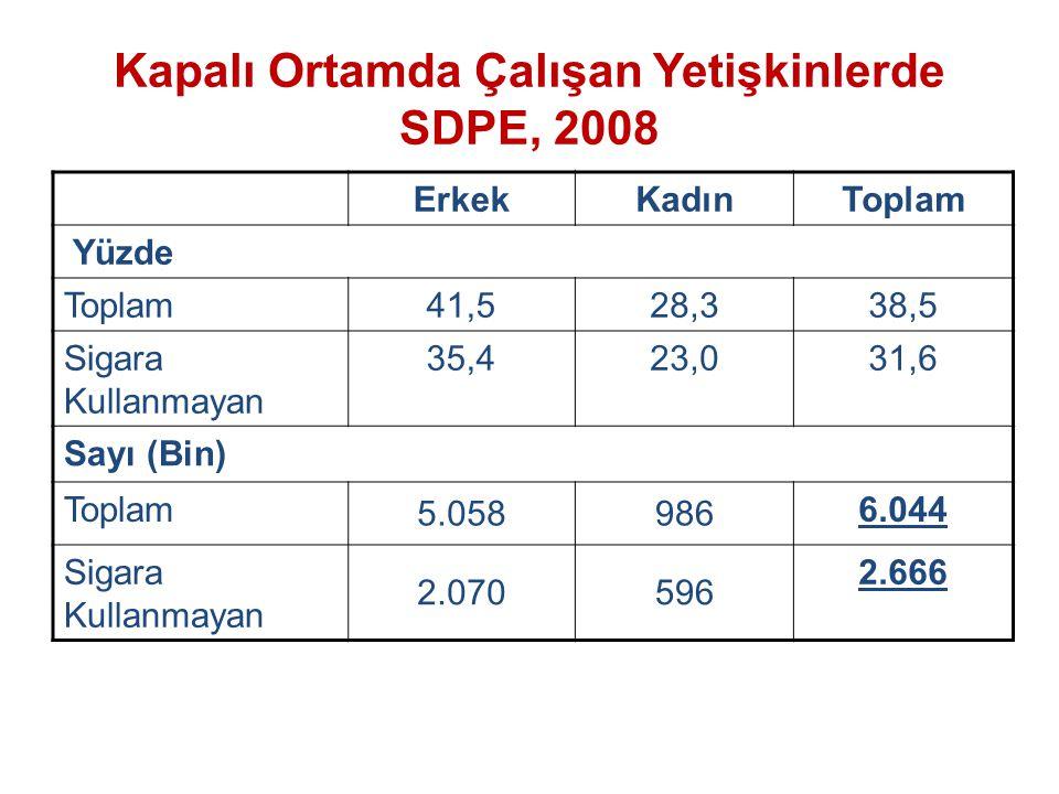 Kapalı Ortamda Çalışan Yetişkinlerde SDPE, 2008