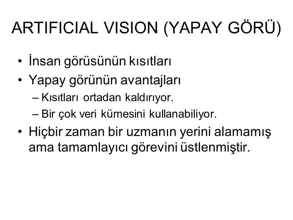 ARTIFICIAL VISION (YAPAY GÖRÜ)