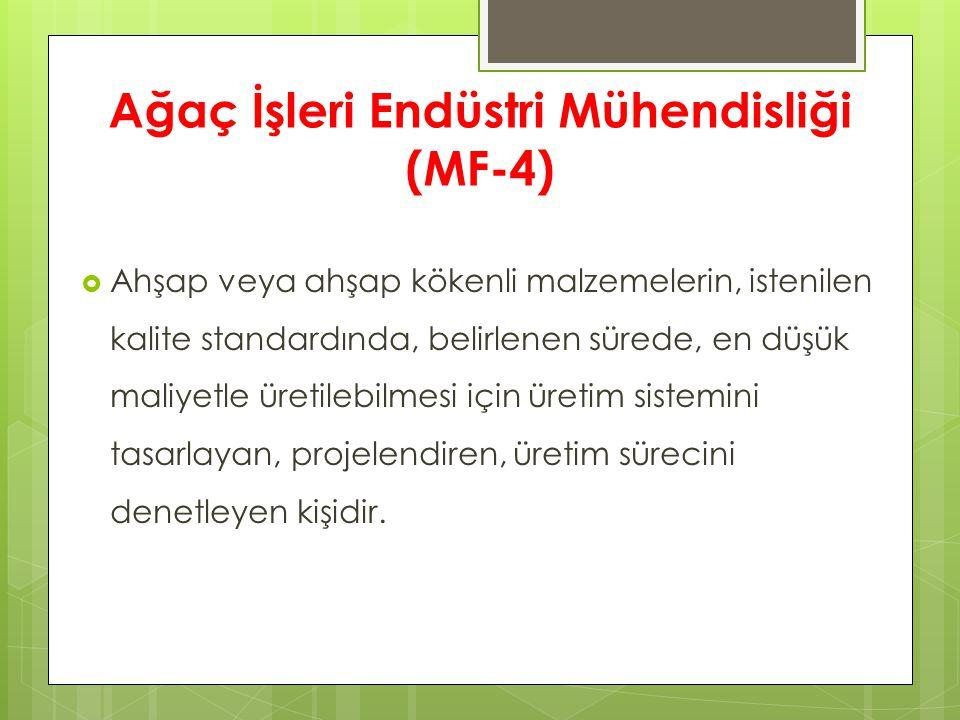 Ağaç İşleri Endüstri Mühendisliği (MF-4)