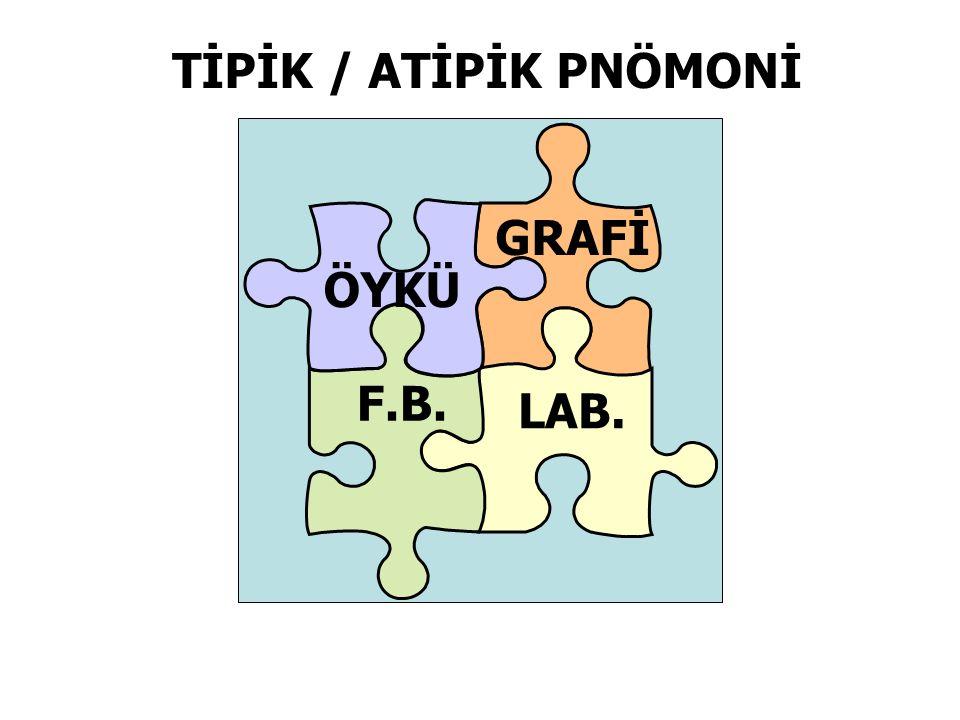 TİPİK / ATİPİK PNÖMONİ GRAFİ ÖYKÜ F.B. LAB.
