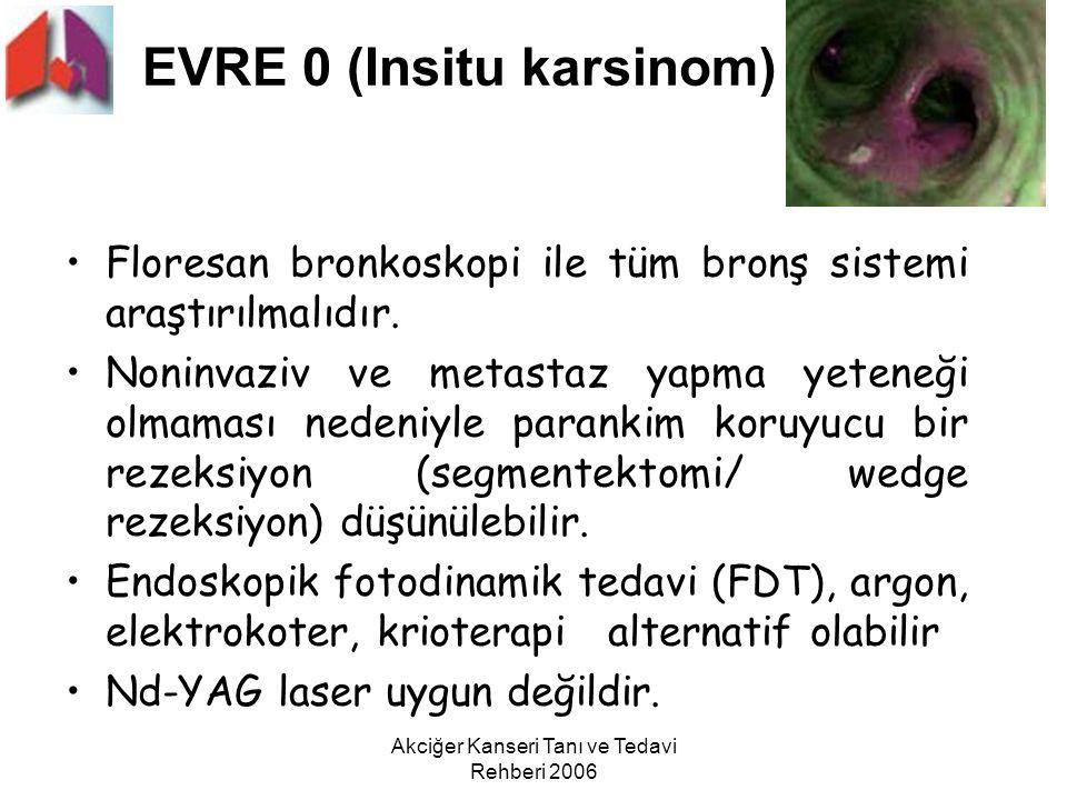 EVRE 0 (Insitu karsinom)