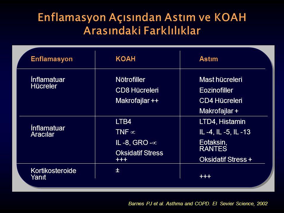 Enflamasyon Açısından Astım ve KOAH Arasındaki Farklılıklar