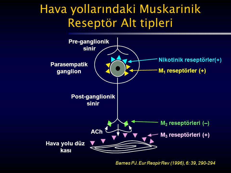 Hava yollarındaki Muskarinik Reseptör Alt tipleri