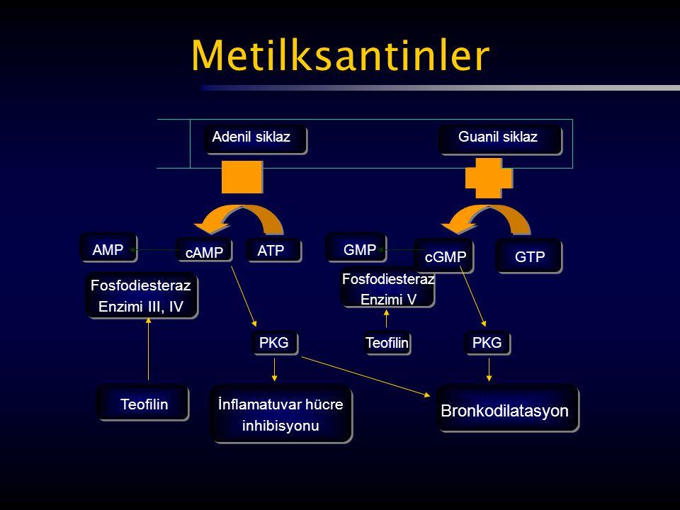 Metilksantinler Bronkodilatasyon cGMP GTP Fosfodiesteraz