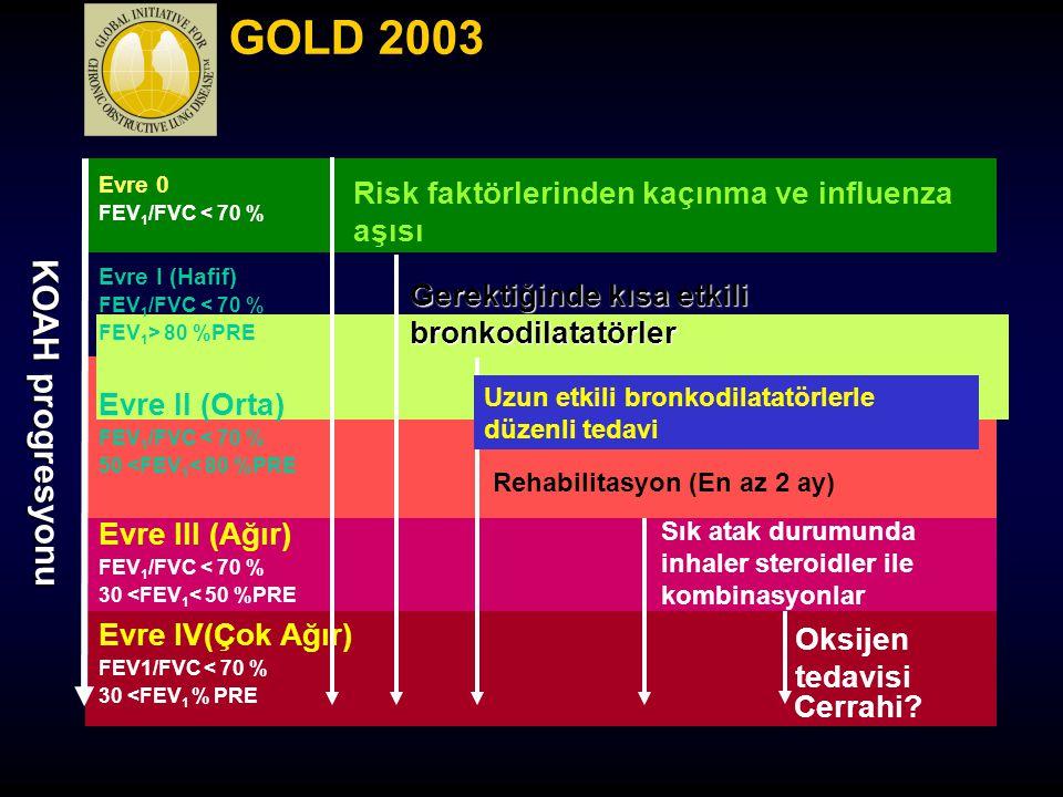 GOLD 2003 Evre 0. FEV1/FVC < 70 % Risk faktörlerinden kaçınma ve influenza aşısı. Evre I (Hafif)
