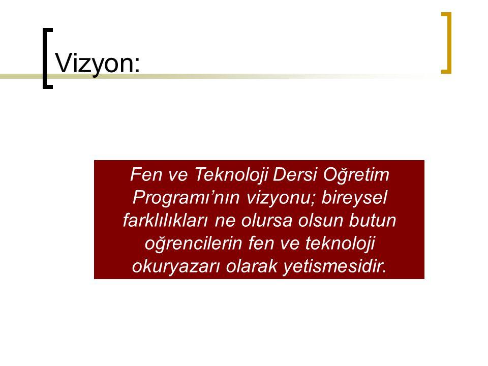 Vizyon: