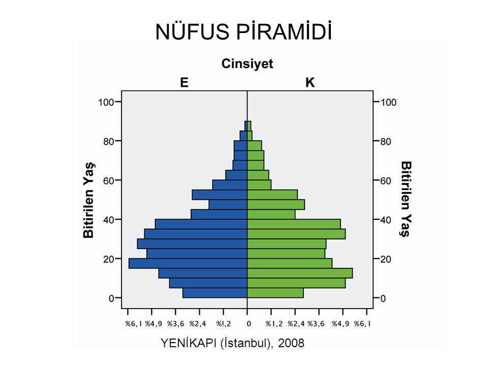 NÜFUS PİRAMİDİ YENİKAPI (İstanbul), 2008