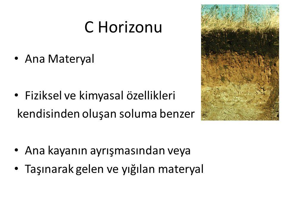 C Horizonu Ana Materyal Fiziksel ve kimyasal özellikleri
