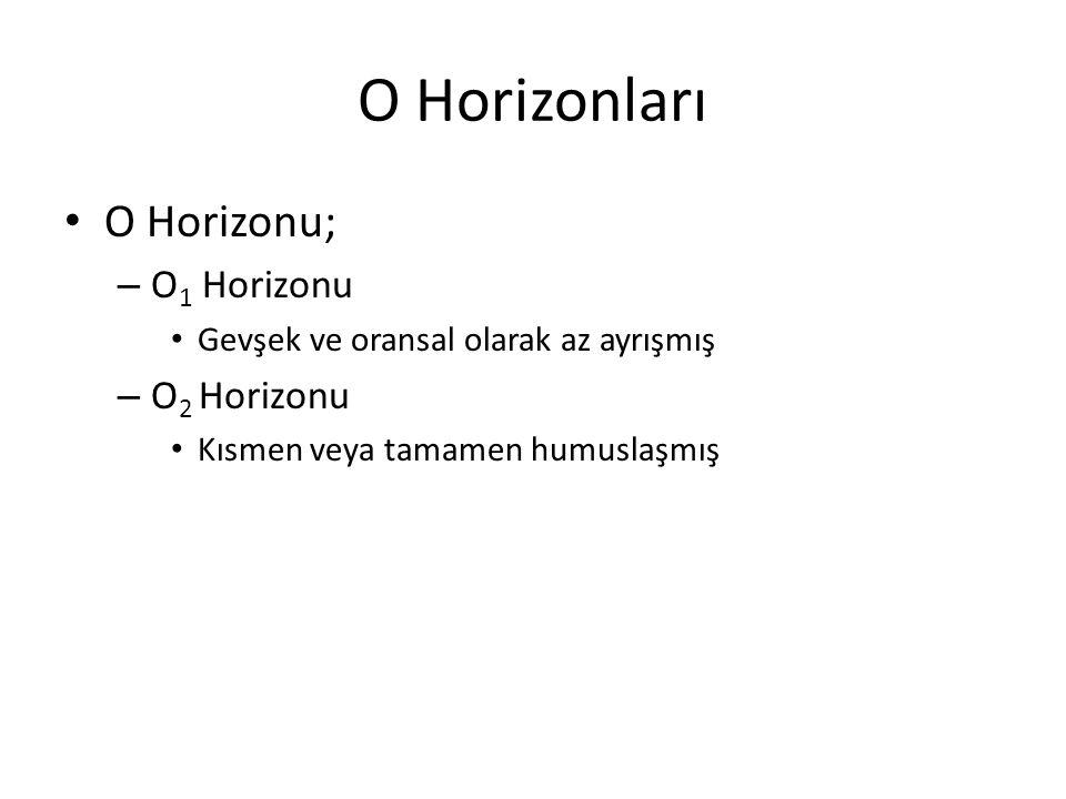 O Horizonları O Horizonu; O1 Horizonu O2 Horizonu