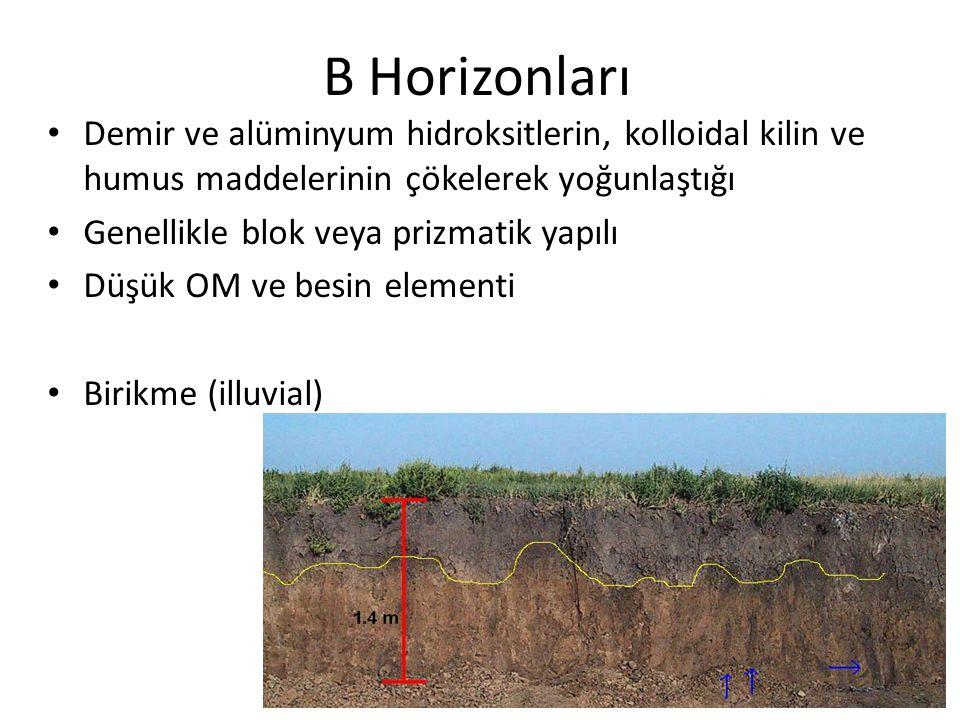 B Horizonları Demir ve alüminyum hidroksitlerin, kolloidal kilin ve humus maddelerinin çökelerek yoğunlaştığı.