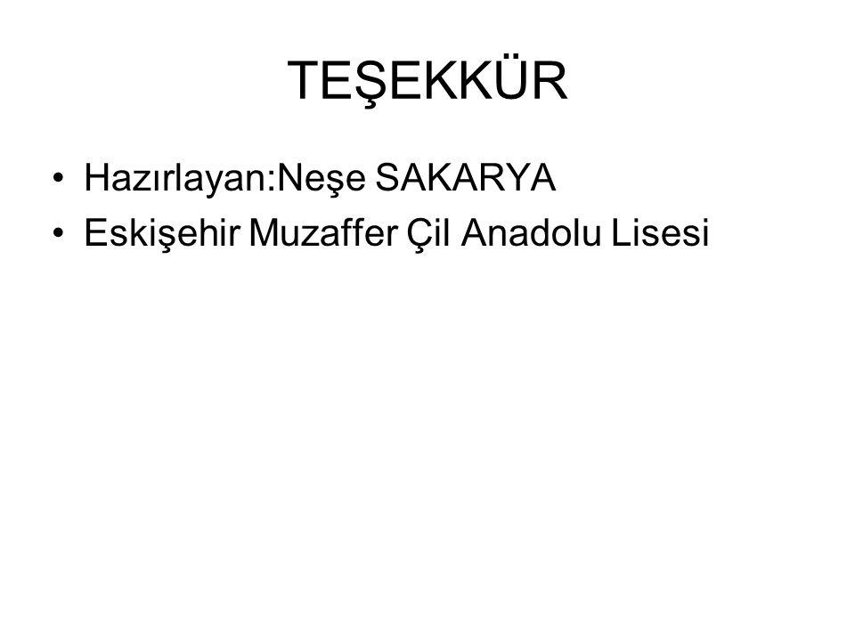 TEŞEKKÜR Hazırlayan:Neşe SAKARYA Eskişehir Muzaffer Çil Anadolu Lisesi