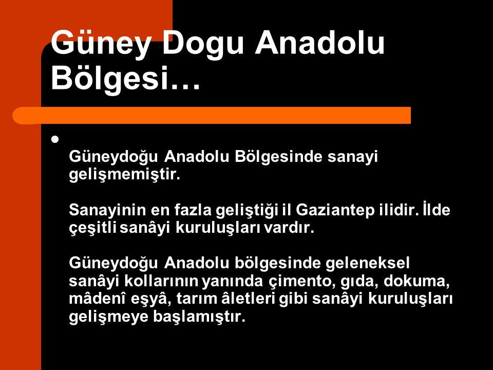 Güney Dogu Anadolu Bölgesi…