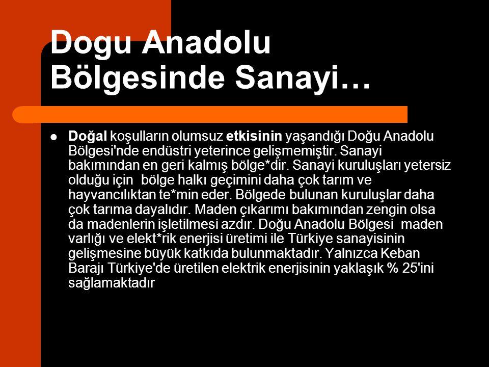 Dogu Anadolu Bölgesinde Sanayi…