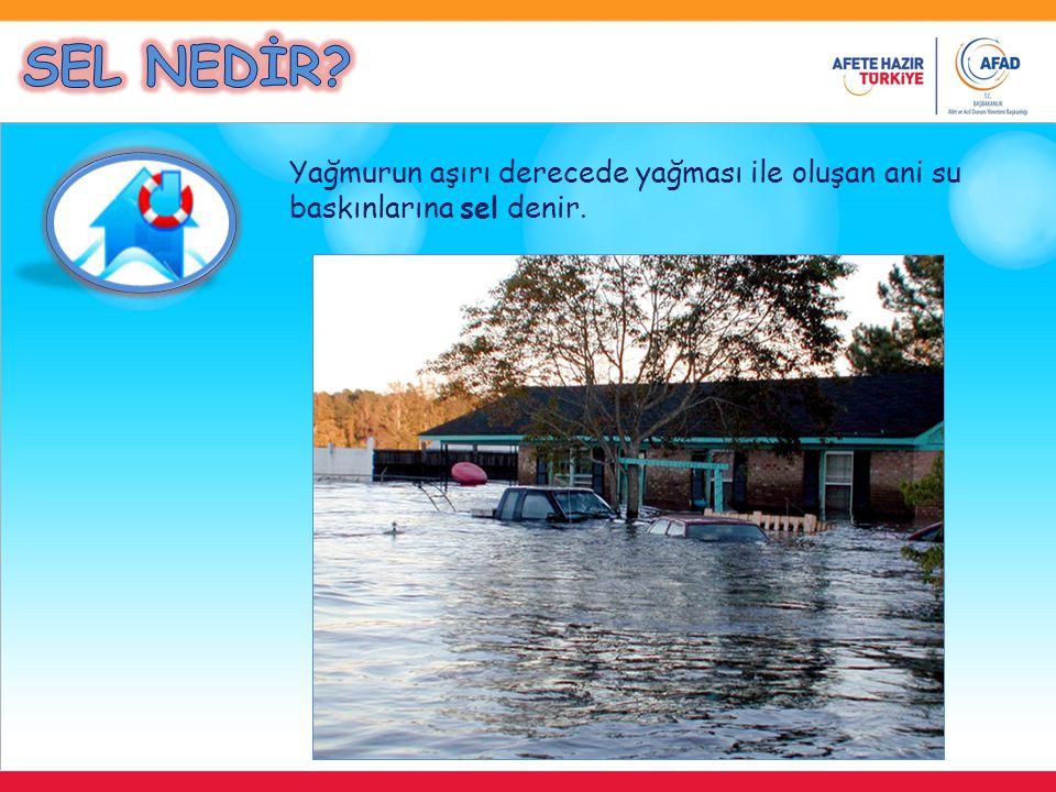 SEL NEDİR Yağmurun aşırı derecede yağması ile oluşan ani su baskınlarına sel denir.
