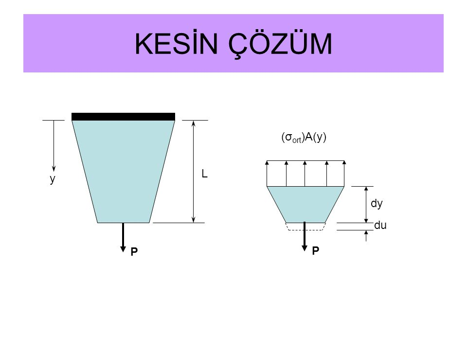 KESİN ÇÖZÜM (σort)A(y) L y dy du P P