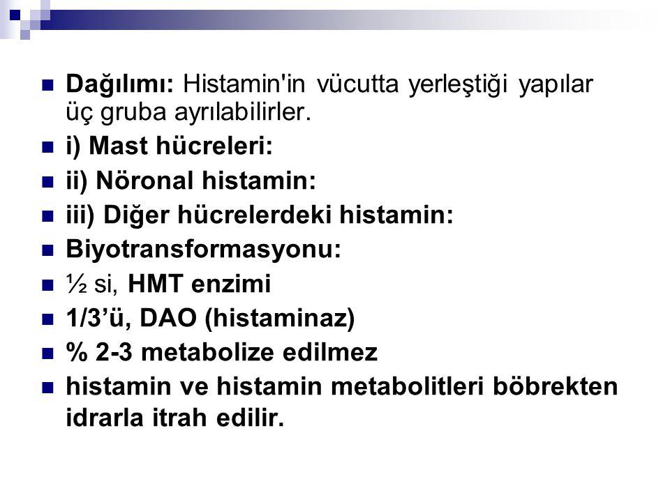 Dağılımı: Histamin in vücutta yerleştiği yapılar üç gruba ayrılabilirler.