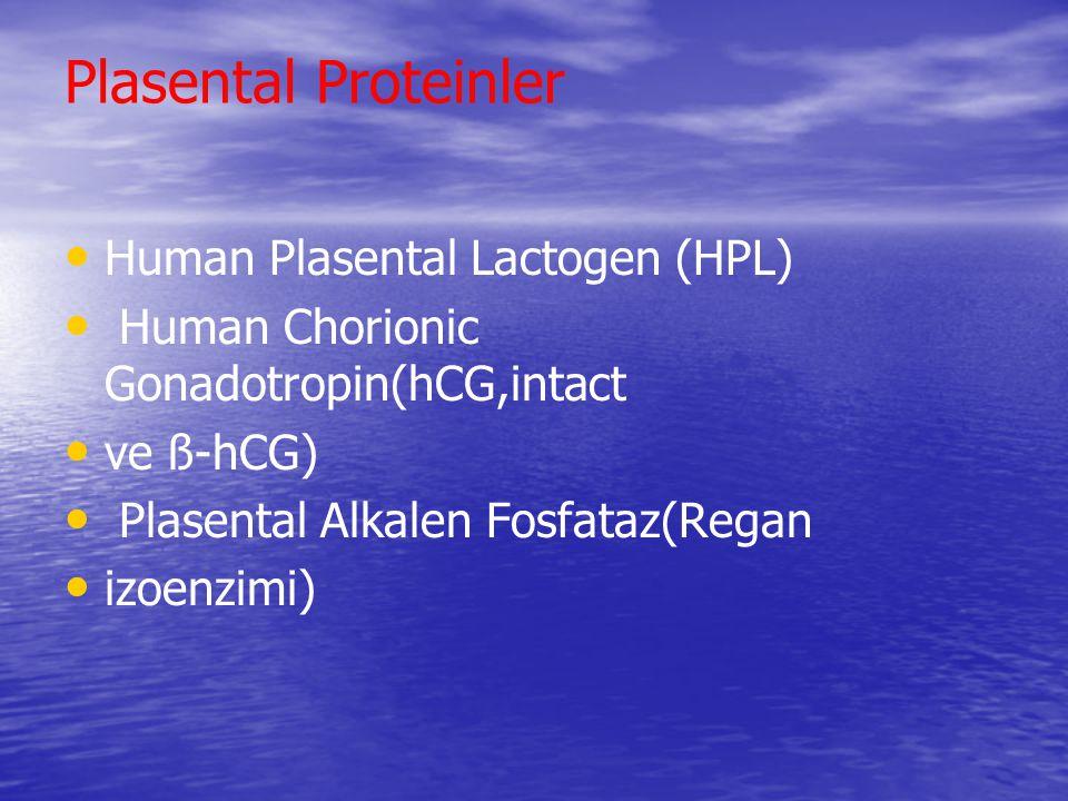 Plasental Proteinler Human Plasental Lactogen (HPL)