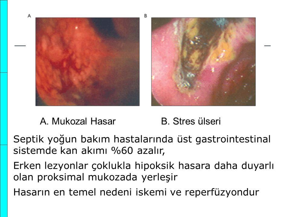 A. Mukozal Hasar B. Stres ülseri. Septik yoğun bakım hastalarında üst gastrointestinal sistemde kan akımı %60 azalır,