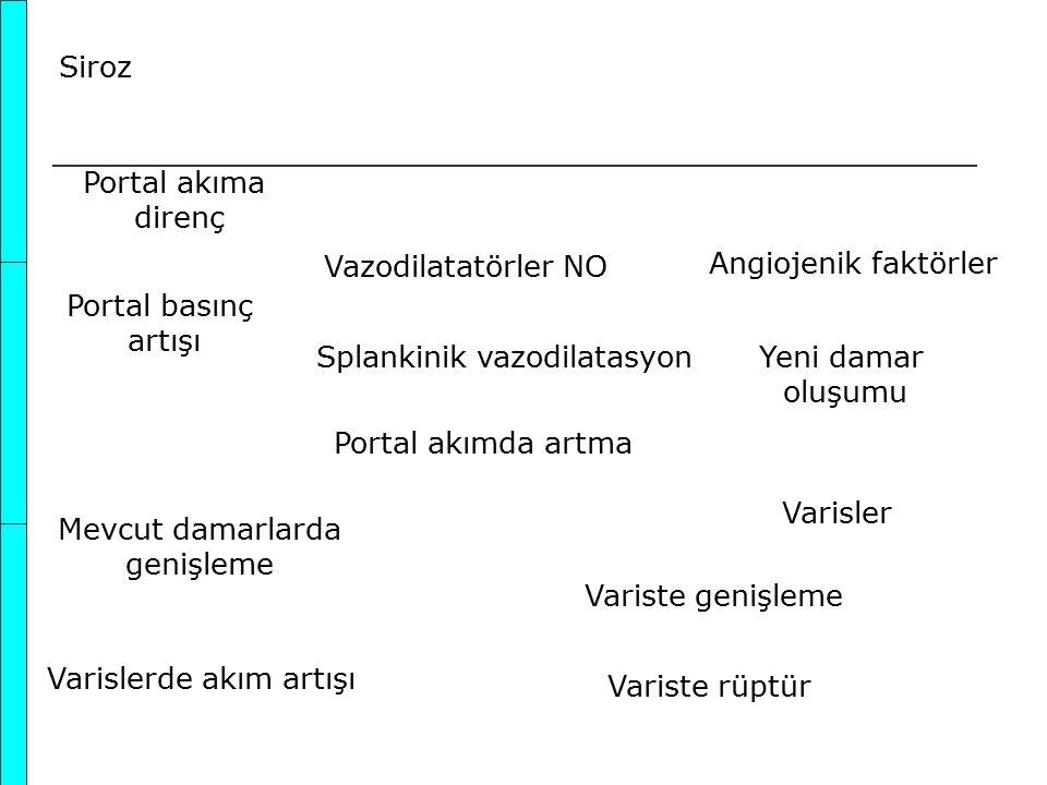 Splankinik vazodilatasyon Yeni damar oluşumu