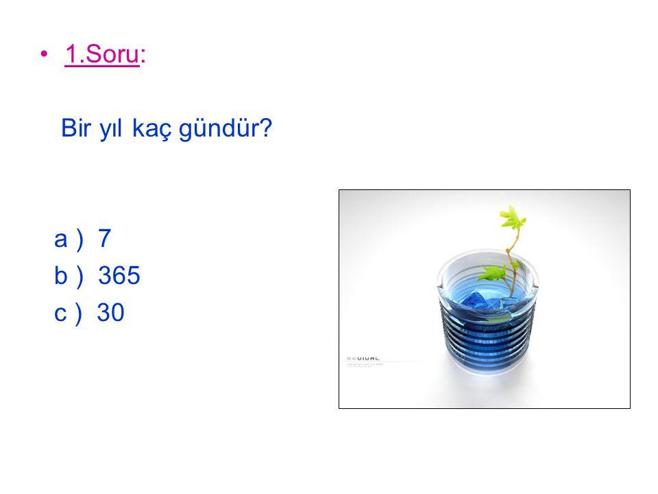 1.Soru: Bir yıl kaç gündür a ) 7 b ) 365 c ) 30