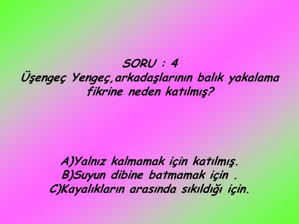 SORU : 4 Üşengeç Yengeç,arkadaşlarının balık yakalama fikrine neden katılmış.