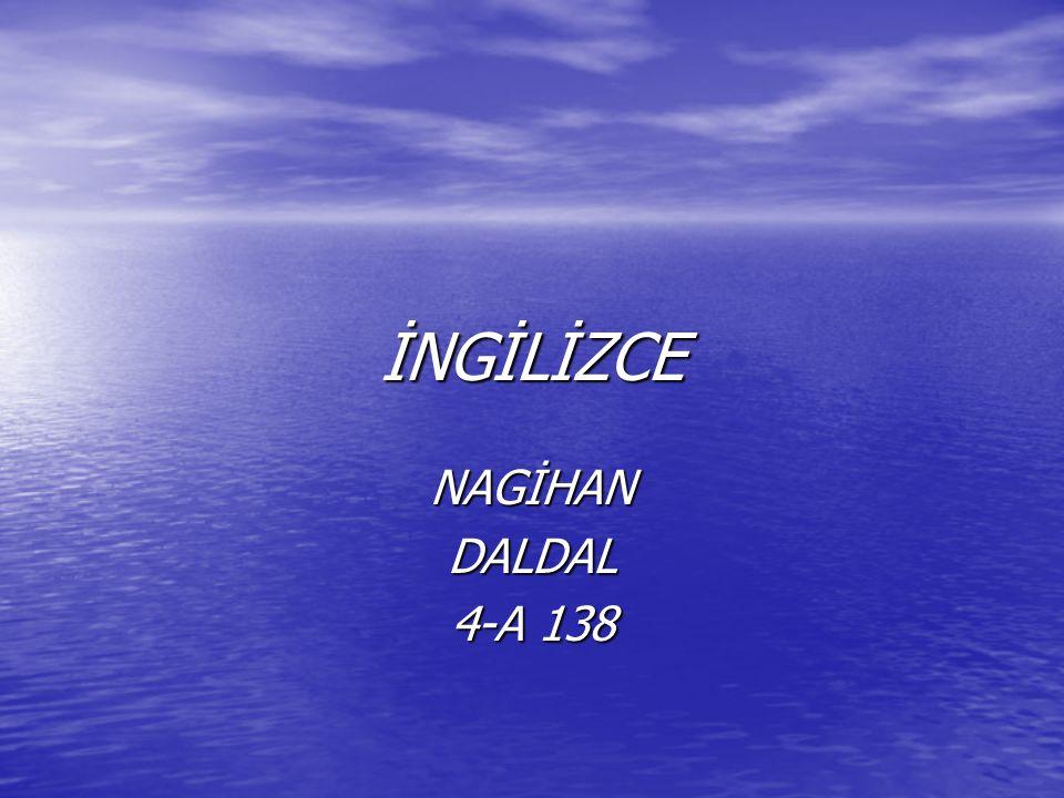 İNGİLİZCE NAGİHAN DALDAL 4-A 138