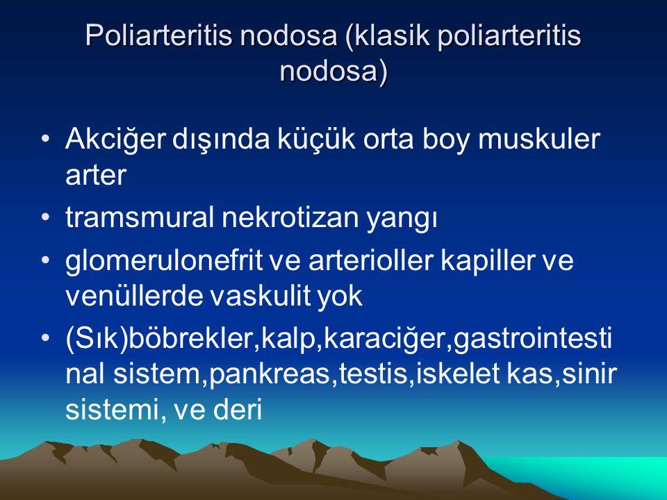 Poliarteritis nodosa (klasik poliarteritis nodosa)