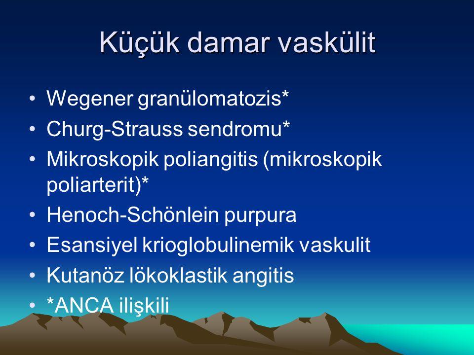 Küçük damar vaskülit Wegener granülomatozis* Churg-Strauss sendromu*