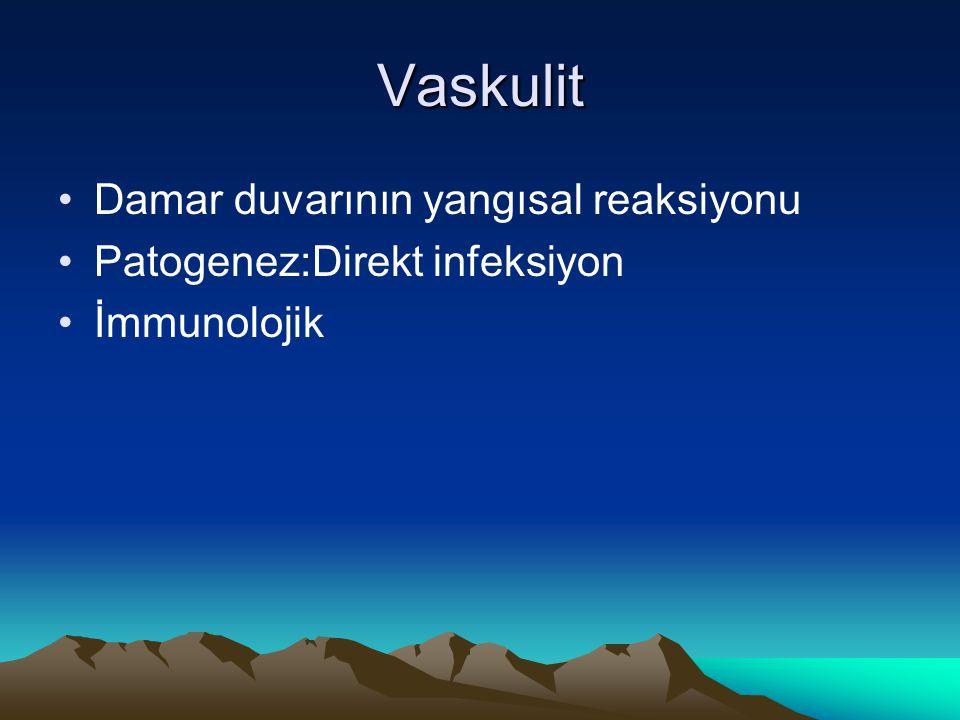 Vaskulit Damar duvarının yangısal reaksiyonu